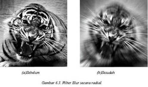 Tutorial Adobe Photoshop - Filter Blur